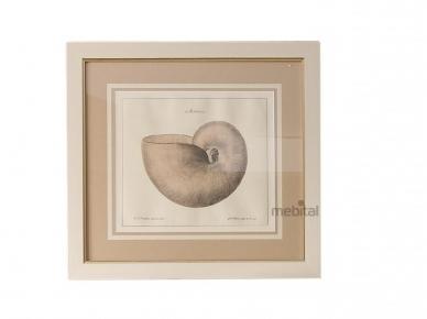 Art. P450 Caroti Картины