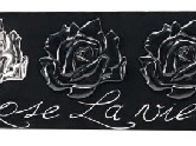 LA VIE EN ROSE - P3270 Pintdecor Картина