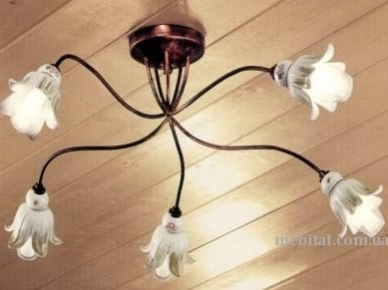 ART. C 854/1 Ferroluce Потолочная лампа