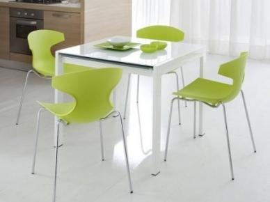 Echo Domitalia Металлический стул