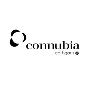 Connubia Calligaris – дизайнерская итальянская мебель
