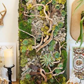 Зеленый декор для дома - стена из мха